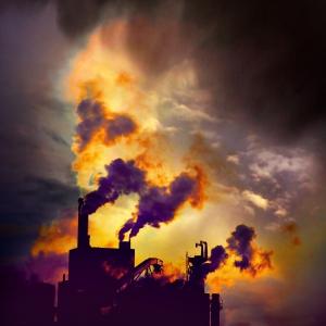 pollution - Beth Fulton